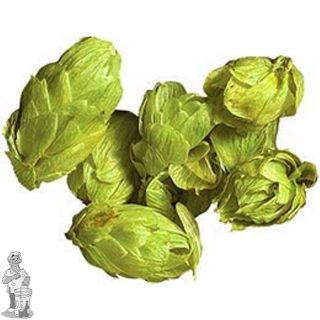 Hallertau Tradition hopbloemen 125 gram