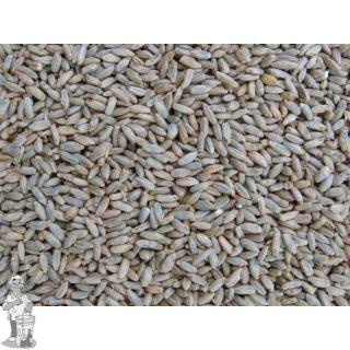 Pale rye malt 6.25 EBC 25 KG ( Thomas Fawcett )