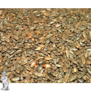 Roasted Rye Malt  ( Thomas Fawcett & Sons) 500 EBC     25 KG
