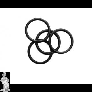 FTSs/ Thermowell o-rings 4 stuks